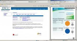 e-Statement Screen Shot