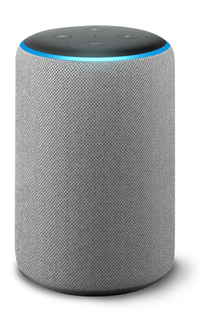 Amazon Alexa grey speaker