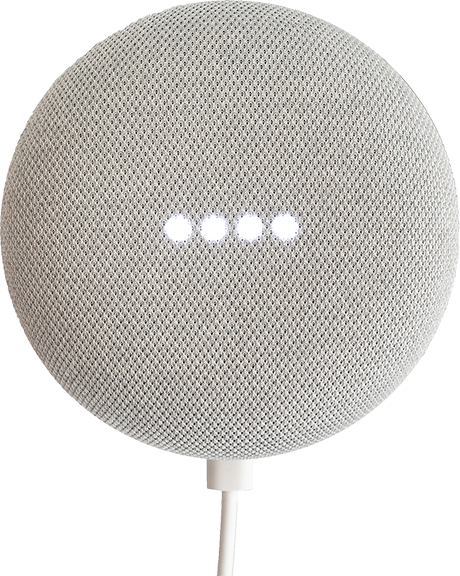 Google Assistant Device